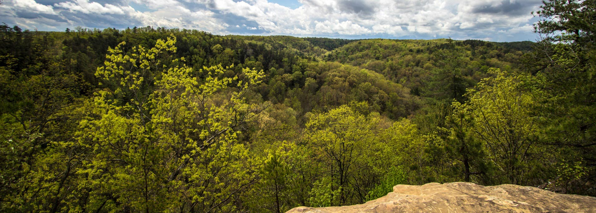 panoramic-view-from-the-natural-bridge-in-kentucky-picture-id524911810